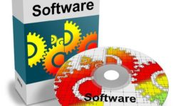 Beyond The Static Software Package Business Solution
